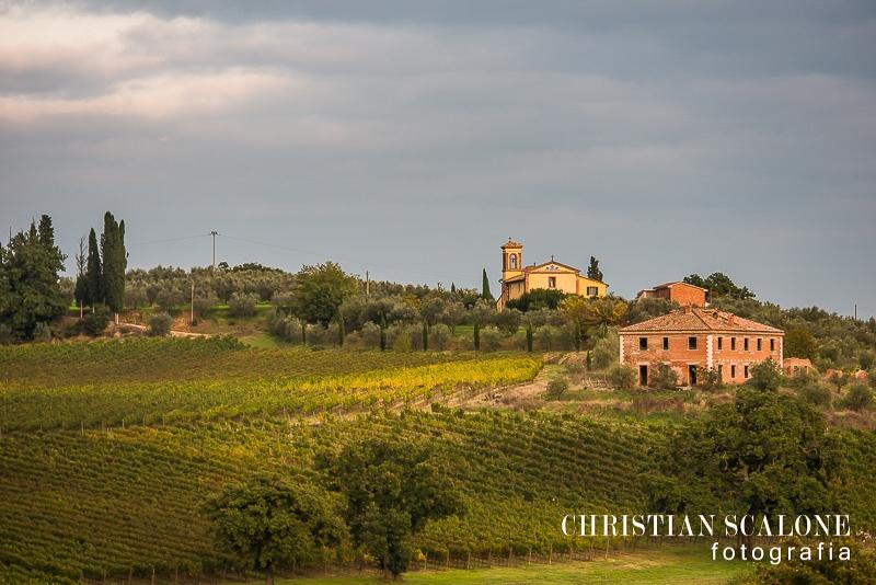 Nobile Di Montepulciano Guided Wine Tours Near Me Vineyard